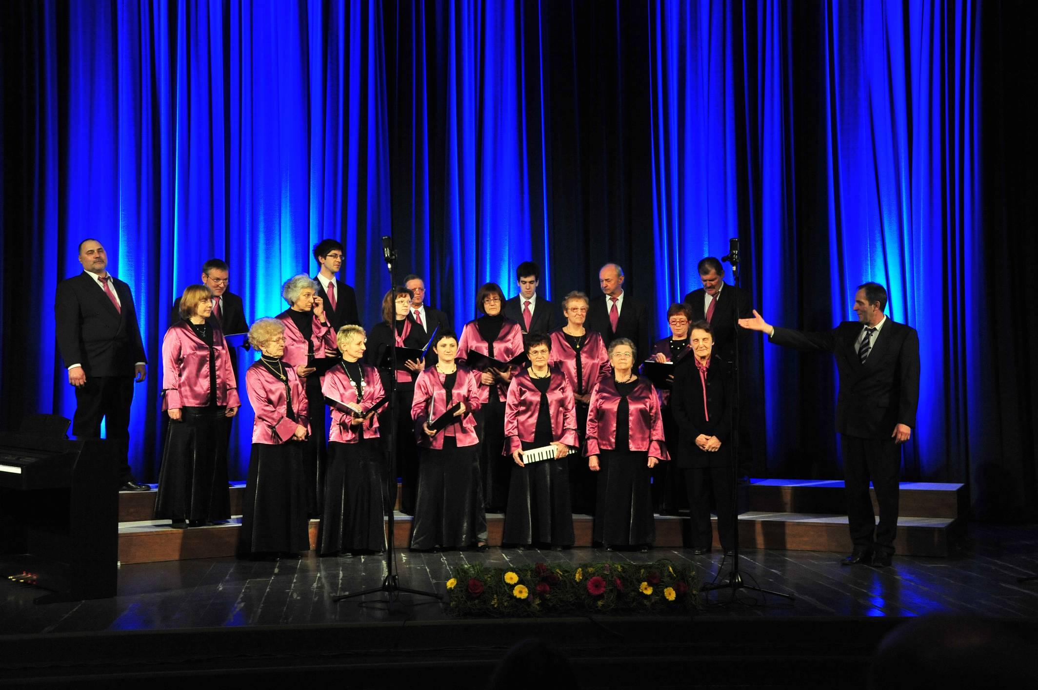 Mešani pevski zbor Žaga